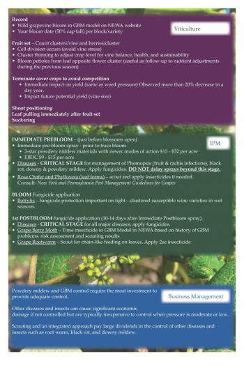 An image of the June 2021 calendar for the Lake Erie Regional Grape Program showing tips.