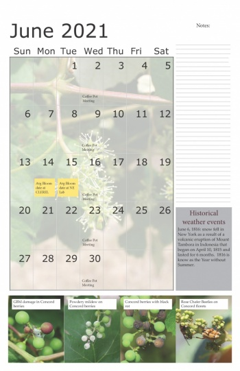 An image of the June 2021 calendar for the Lake Erie Regional Grape Program showing photos and a notes area.