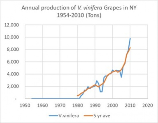 Annual Production of V. vinifera Grapes in NY 1954-2010 (Tons), showing an overall rise in V. vinifera and 5 year average with data stopping in 2010.