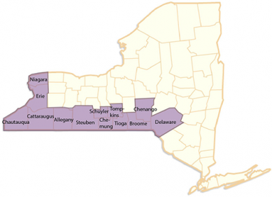 Map of New York counties where the Vineyard Improvement Program can take place.