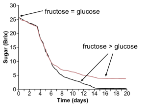graph showing fructose and glucose conversion over time