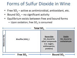 Forms of Sulfur Dioxide in Wine